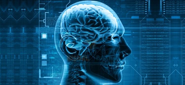Beynin performansını artırma yolları